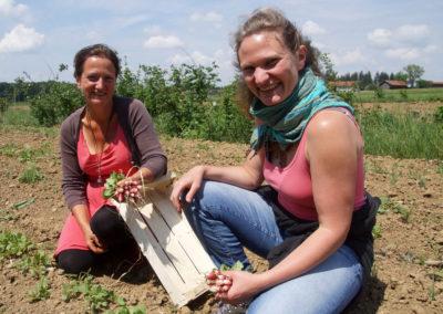 Solawi Chiemgau | Kristine Rühl und Karoline Widur